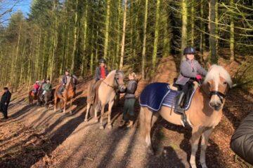 Hjemmeundervisning i rideskolen