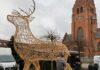 Stort rensdyr på Kirketorvet