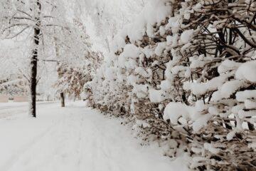 Hold dit fortov fri for sne og is – eller hav styr på din ansvarsforsikring